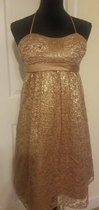 Alfred Angelo Harvest Gold Lace Dress Size 6